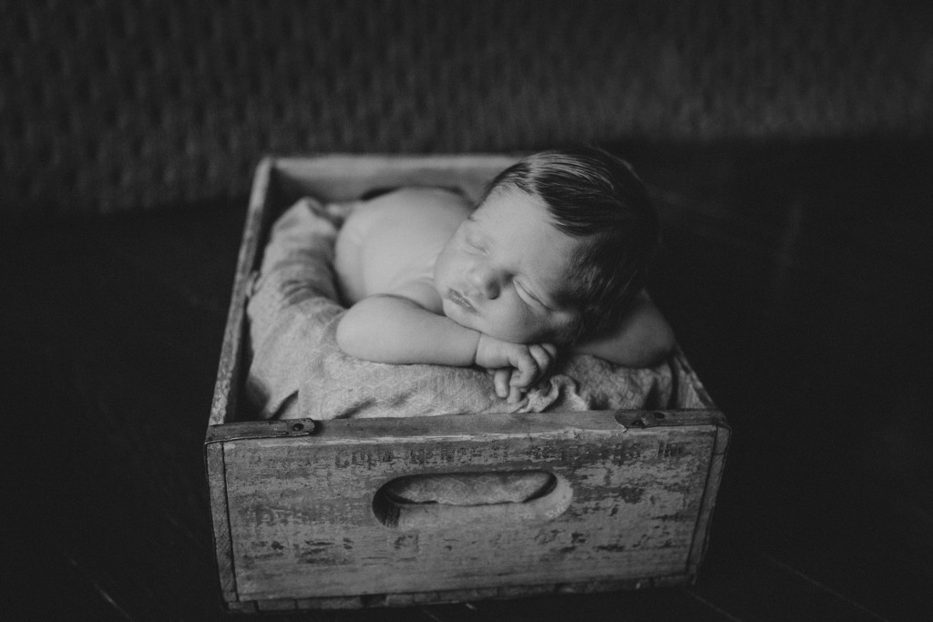 russiaville indiana newborn photographer
