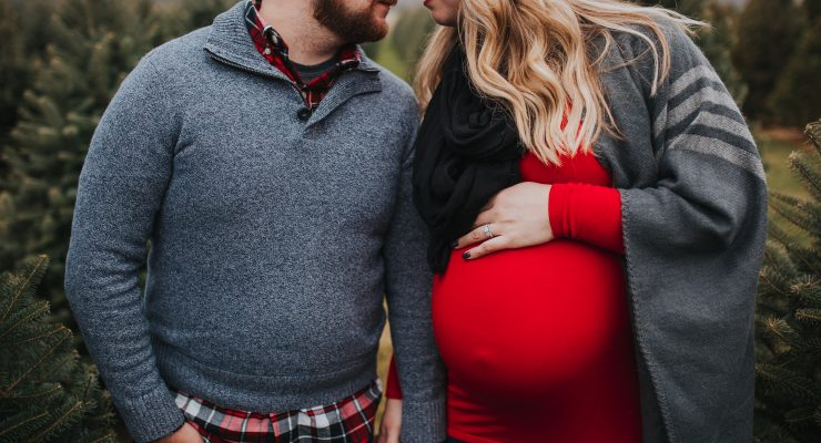 Kokomo & Indianapolis Indiana Maternity Photographer